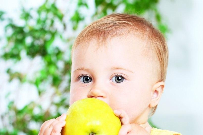 Kuidas mõjutab tihe näksimine põhisöögikordade vahel väikelapse tervist?