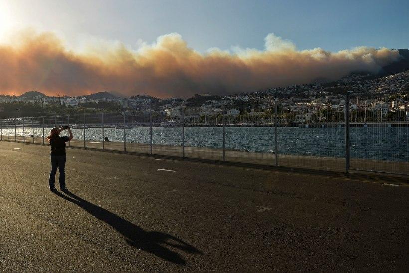 FOTOD | Madeiral jõudis laastav maastikupõleng linna, hukkunud on mitu inimest