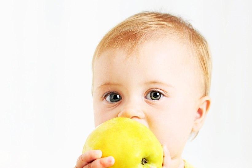 Kuidas meelitada väikelast sööma?