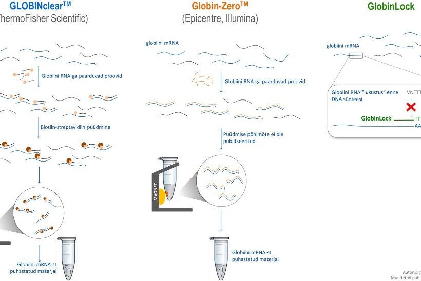 Tartu teadlaste uus meetod lihtsustab vereproovide analüüsi