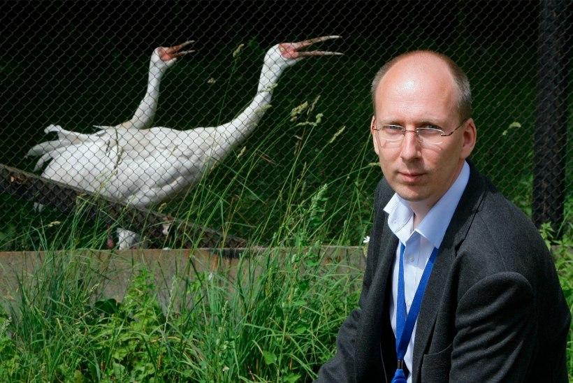 Loomaaia direktori leidmiseks kuulutatakse välja uus konkurss