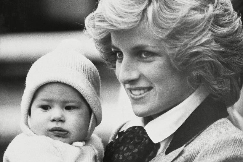 Printsess Diana ihukaitsja: prints Harry ei ole sohilaps!