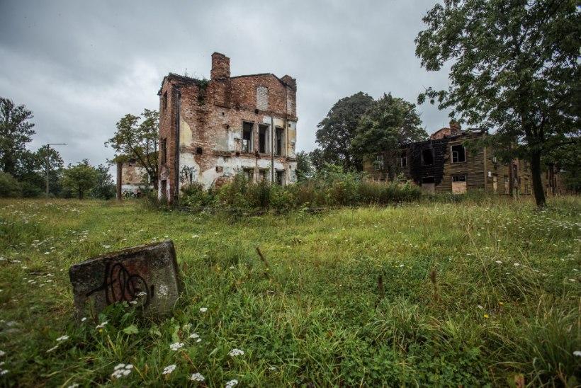 FOTOD | IKKA EI MINGIT EHITUST: Kopli liinidel on vaatepilt endiselt trööstitu