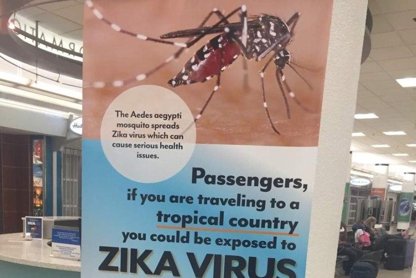 Barack Obama hoiatab Zika viiruse eest