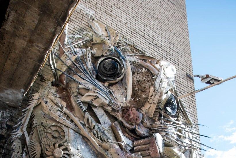 FOTOD JA VIDEO   Street Art Jami avateoseks on prügist valminud Telliskivi loomelinnaku lendorav