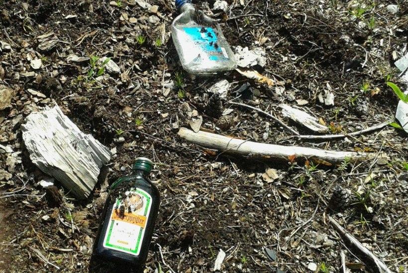 Kellele kuuluvad napsipudelid, mille Soidro ja Tarand leidsid Dmitri Dmitrijevi kurikuulsalt avariipaigalt?