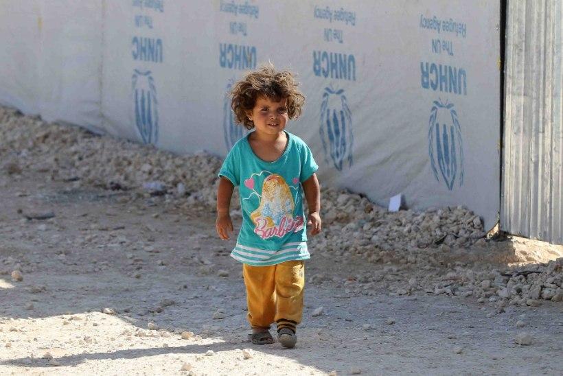 Eestisse saabus Türgist 11 süürlasest sõjapõgenikku