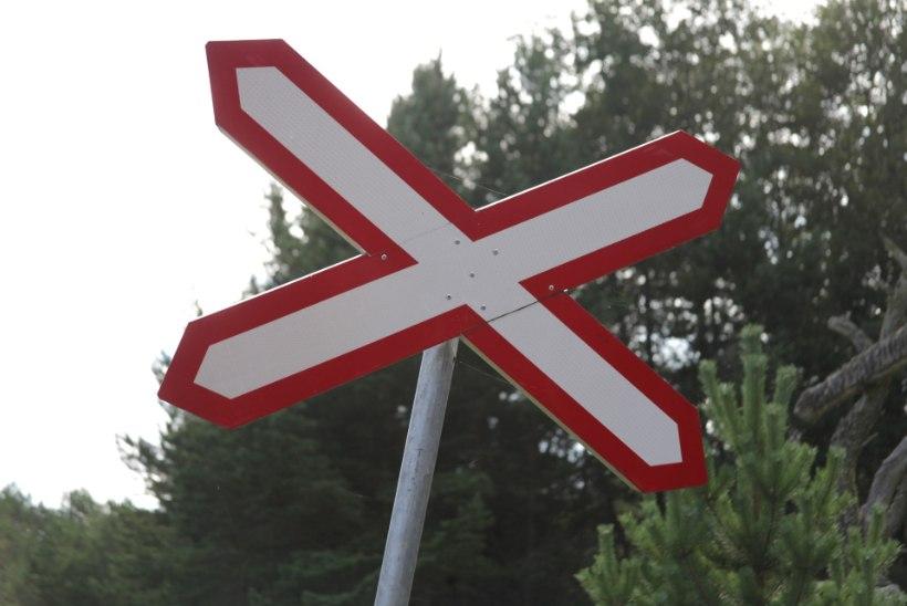 Ettevaatust rong! Kas aeg võtab Naissaare maskott Petka leiva?