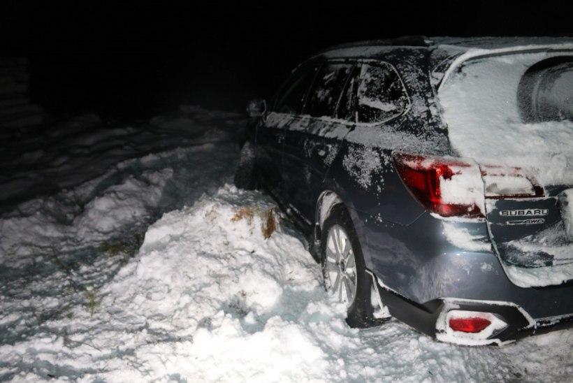 Millises taskus soojendas avarii teinud riigikogulane külmarohtu?