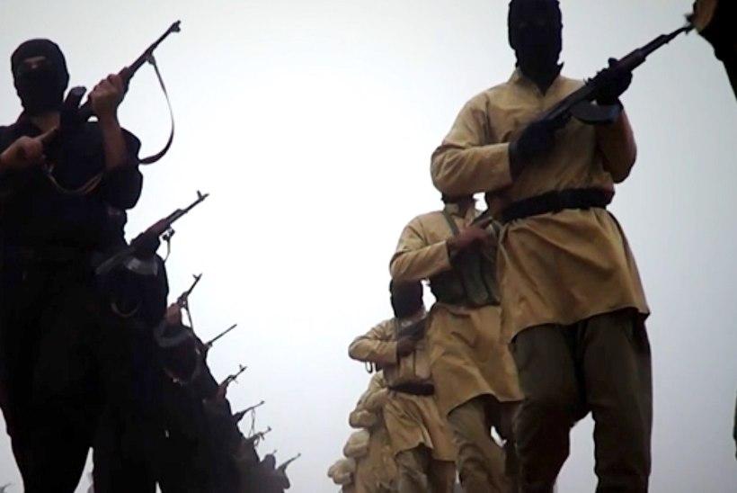 Endine võitleja: Islamiriigi struktuurid Euroopas ootavad rünnakukäsku