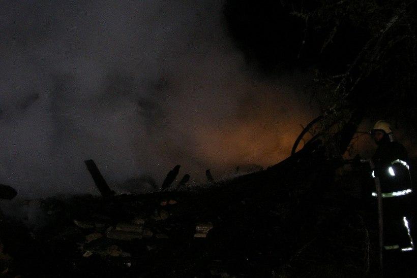 PIIRISSAARE RAHVAS HIRMUL: kas kõik põlengud olid süütamised?