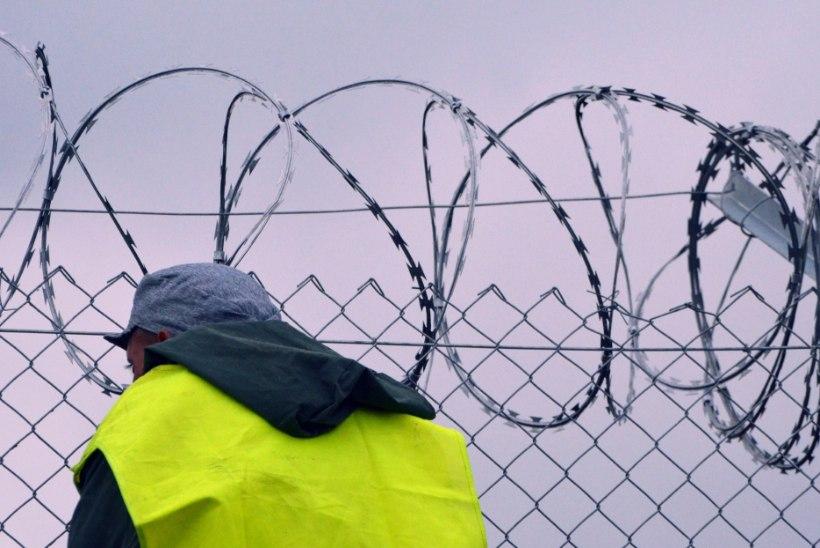 Ungaris vahistati 12aastast tüdrukut vägistada tahtnud põgenik