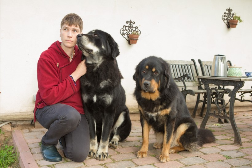 Tõuühing keelab Roy Strideri koerale emarõõme