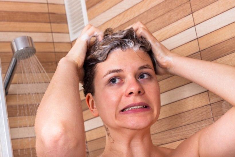 Kiire ja lihtne test: millises seisukorras on su juuksed?