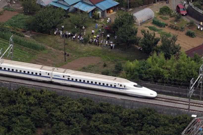 Madu peatas Jaapanis kiirrongi