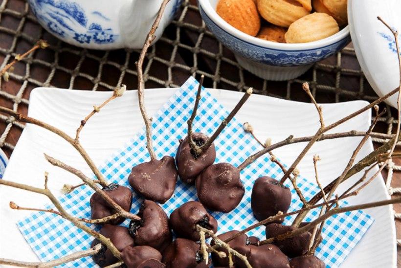 Pähklioksaploom 'Hiiu sinine' rummi ja šokolaadiga