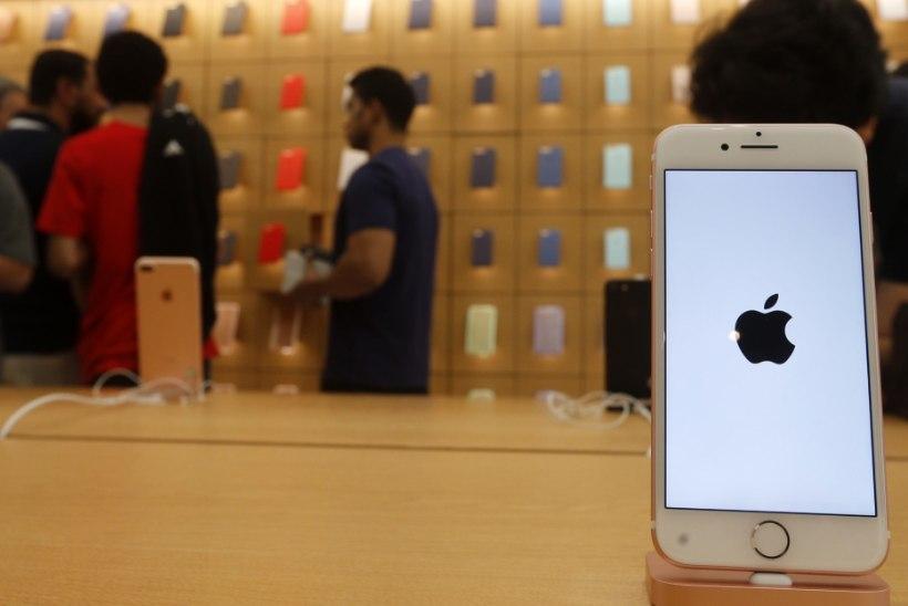Paldiski jäi ilma Apple'i miljardist