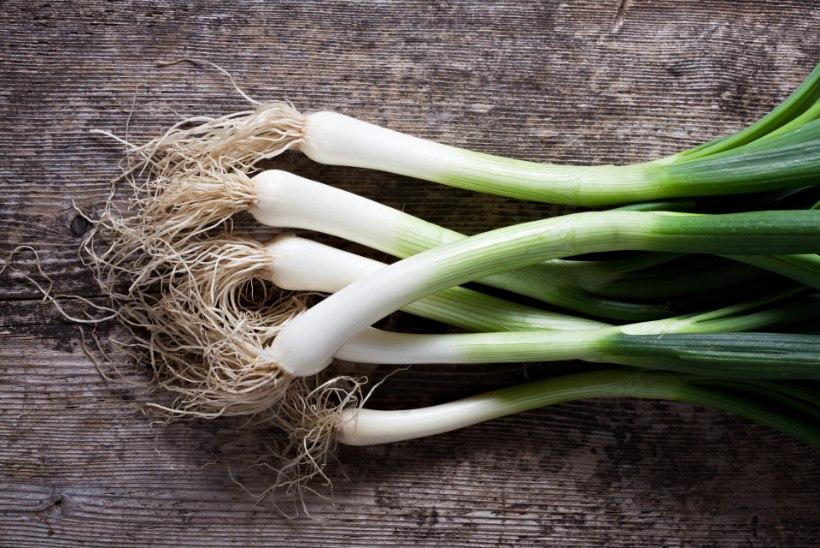 Taaskasutus köögis! 4 vilja, mida saab uuesti kasvama panna