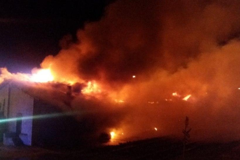 Laohoone põleng mattis Paldiski paksu suitsupilve: päästjad töötasid kogu öö