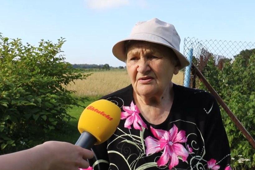 ÕHTULEHE VIDEO | VÄLISMAA EESTIS: Siberi külas valitseb armastus!