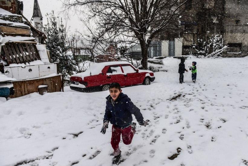 Külmalaine on Euroopas nõudnud juba üle 60 inimelu