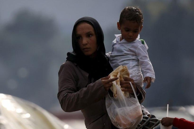 UURING: Euroopas, eriti Lõuna-Euroopas jääb üha rohkem naisi lastetuks