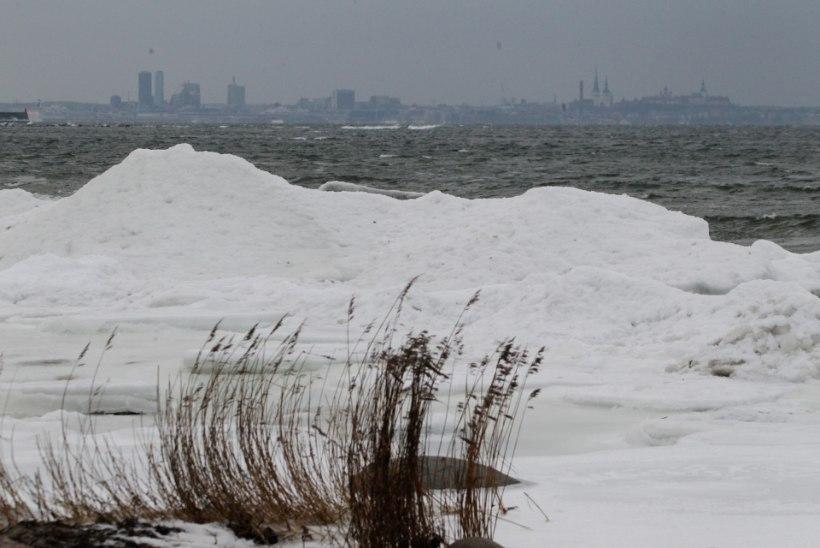 GALERII JA VIDEO: tormine meri ehitab jääst kaunistusi