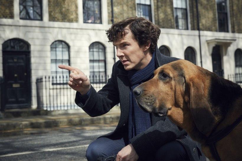 """Sherlocki"" viimane osa lekkis internetti"