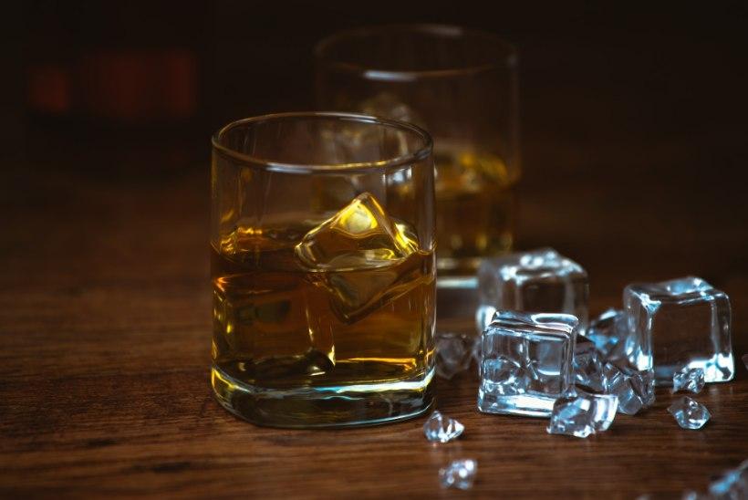 Suures koguses alkoholi tarbimine suurendab ajuinfarkti riski 60% võrra