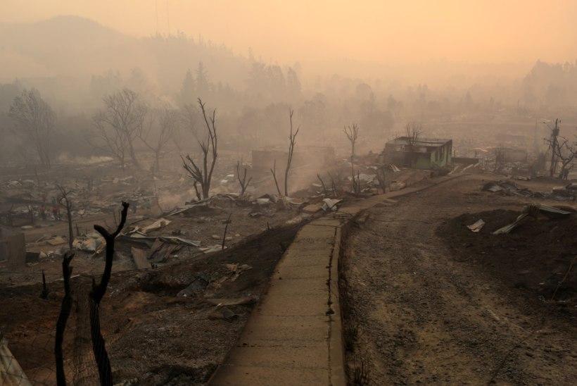 FOTOD | Põleng hävitas Tšiilis terve linna