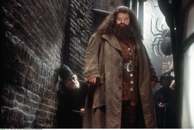 Robin Williams tahtis Hagridit mängida