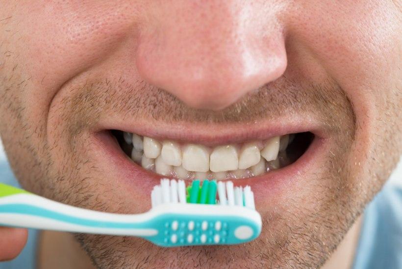 Mees, kas tead, kuidas on omavahel seotud erektsioon ja hambapesu?