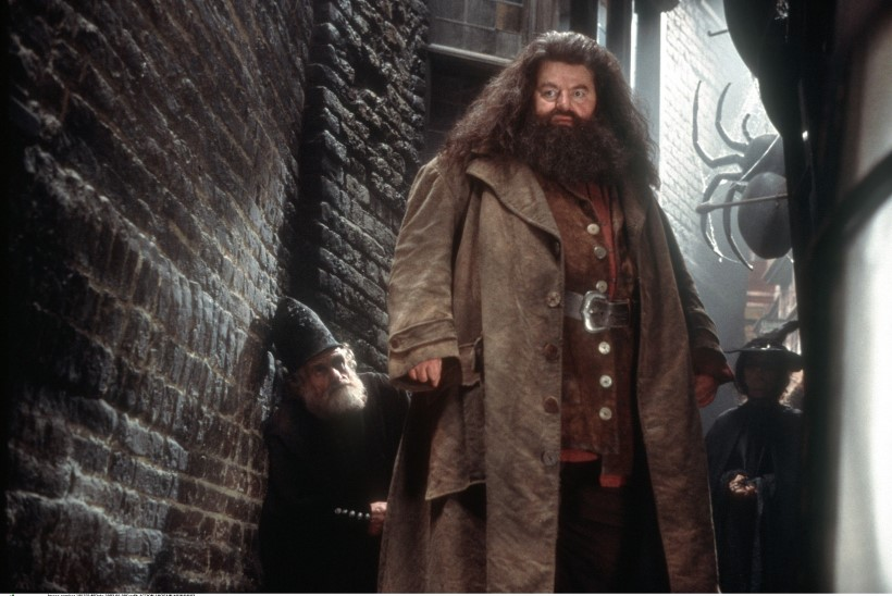 Robin Williams tahtnuks Harry Potteri Hagridit mängida