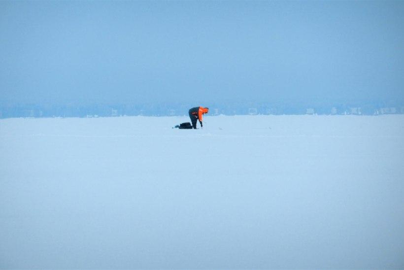 Lämmi- ja Pihkva järv kalastajaile taas avatud