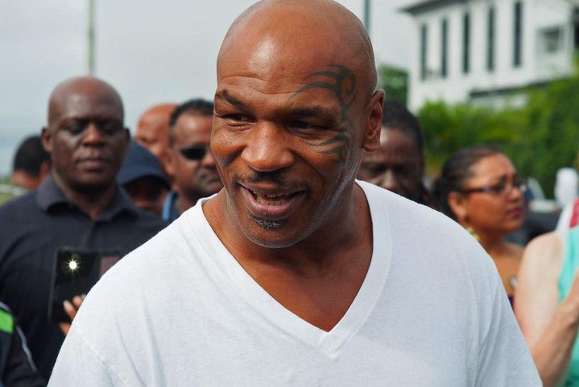 Naisepeksja Chris Brown õpib Mike Tysonilt, kuidas kõvemini lüüa