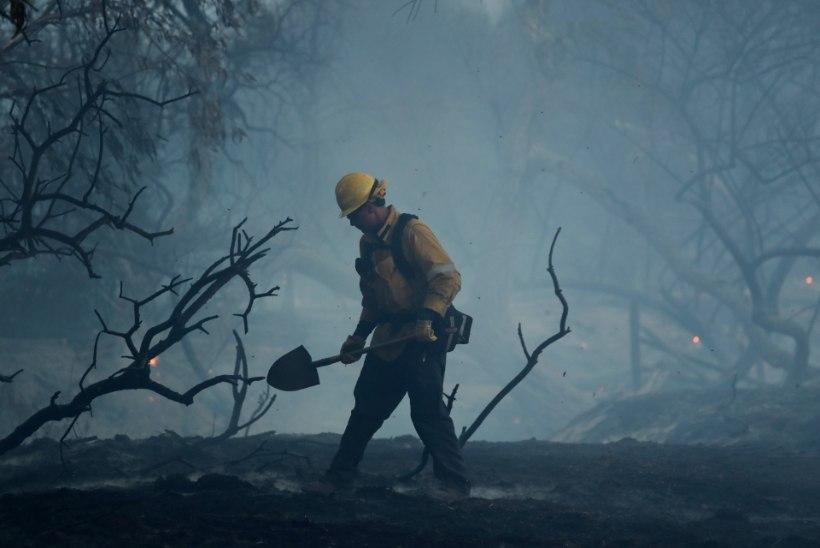 FOTOD | Maastikupõlengud Californias on nõudnud juba 10 inimelu