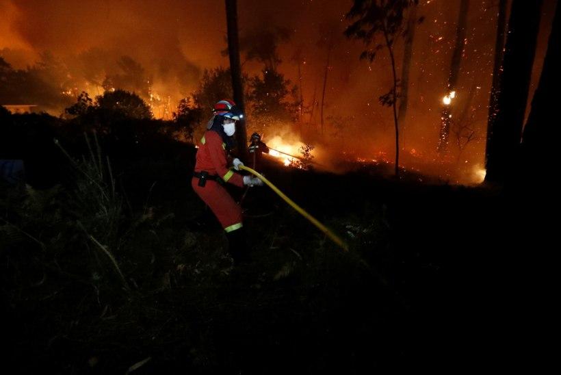 Portugali metsapõlengutes on hukkunud vähemalt 27 inimest