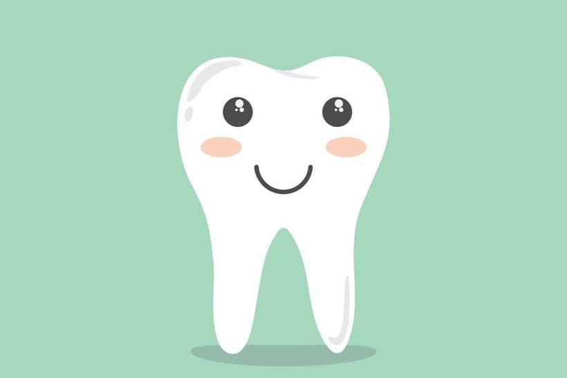 Isetegemine uuel tasemel: valmista hambapastat!