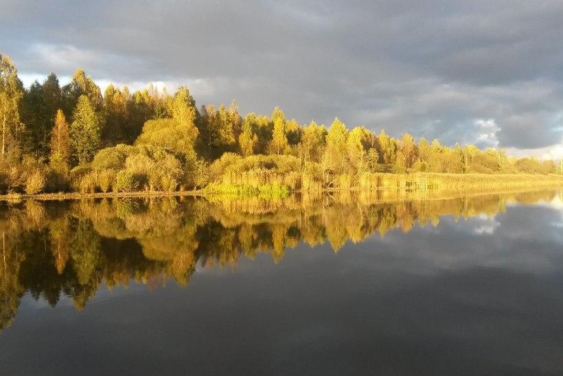 GALERII   Lugejate fotod Eestimaa maagilistest sügisilmadest