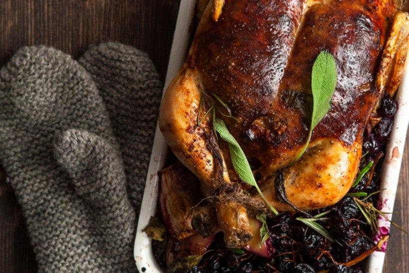 Kana siidri, kitsejuustu ja tumedate viinamarjadega