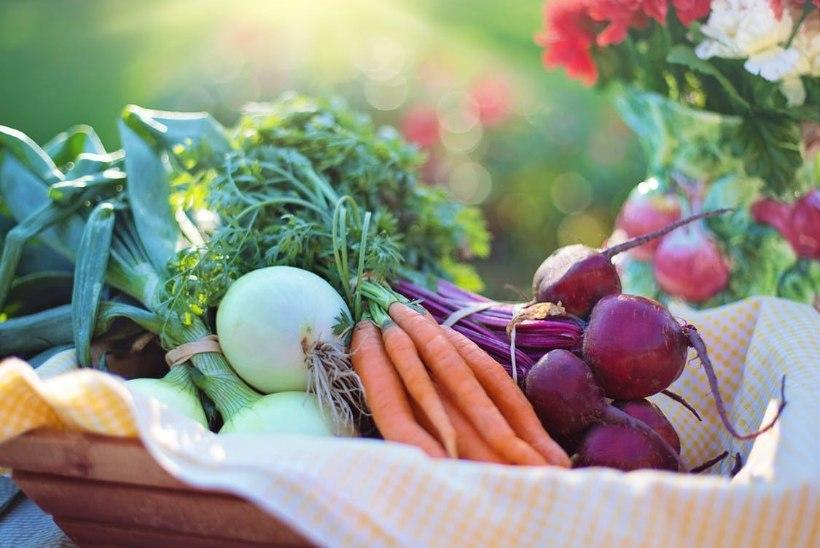 Kuidas panna lapsed köögivilju sööma?