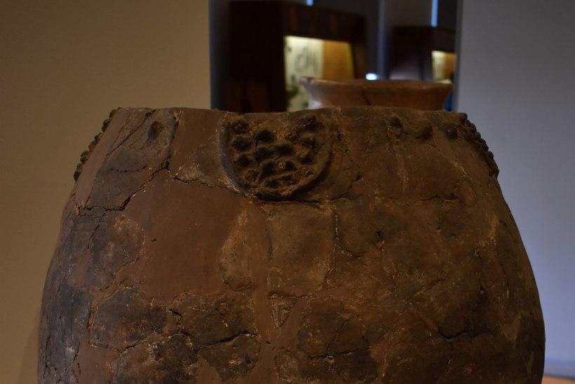 FOTOD | Gruusiast leiti 8000 aastat vanad veinijääkidega potikillud