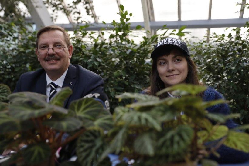 Roheliste juht Züleyxa Izmailova: roniksin ka abilinnapeana puu otsa!