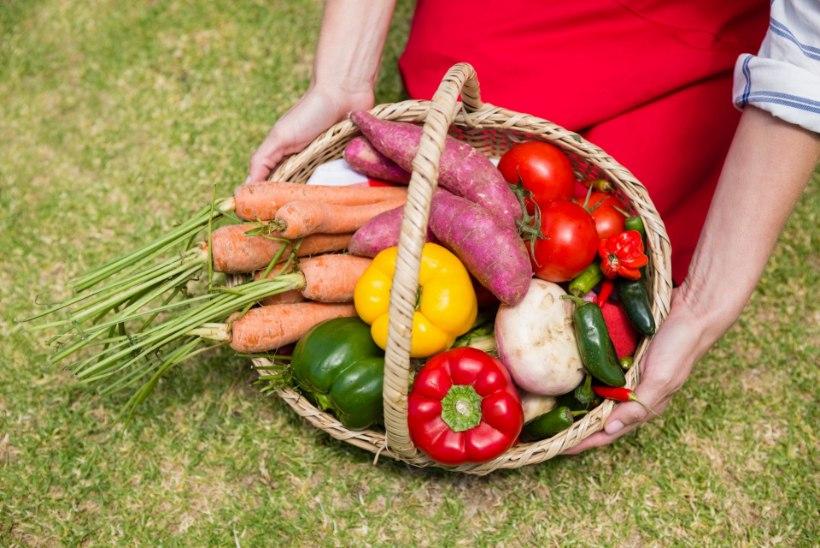 Viis taimetoitlaste toitumisnippi, mida võiks järgida igaüks