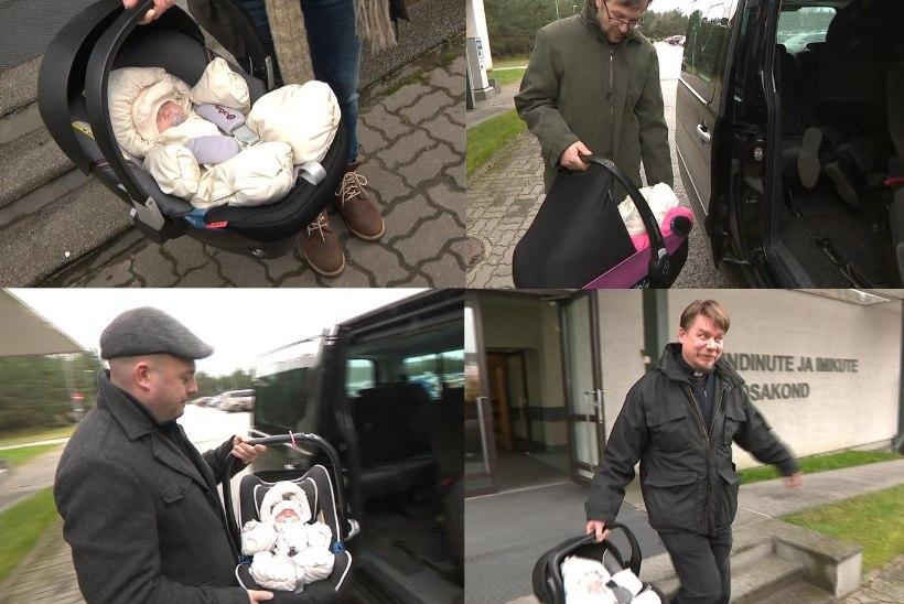 FOTOD | Nelikud said lõpuks haiglast koju!