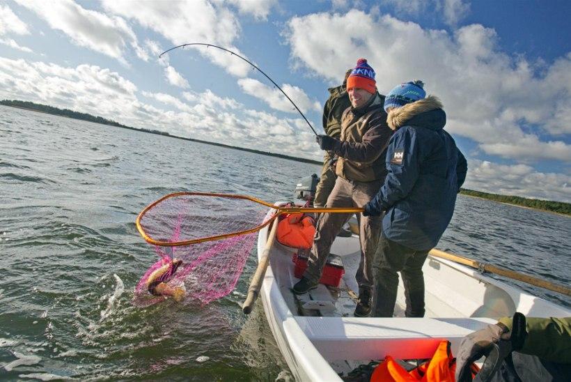 Joel Lindpere hilja avastatud kalastuskirg ei näita vaibumise märke