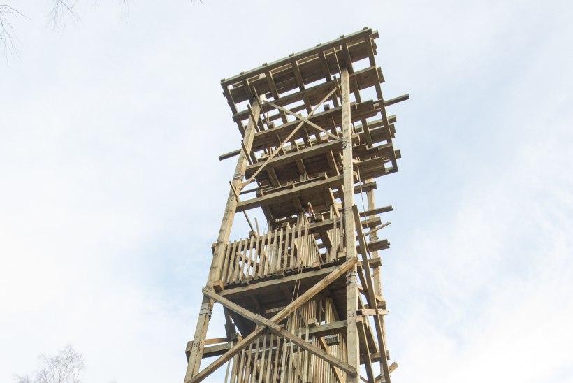 Märtsitormiga murdunud Iisaku vaatetorni kohale kerkib jõuludeks uus