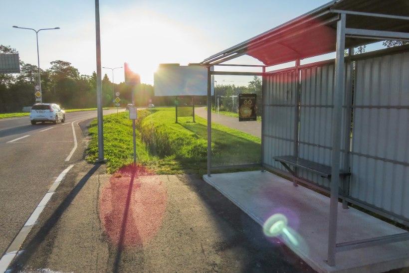 Mille taga viibib maakonnaliinide tasuta transport?