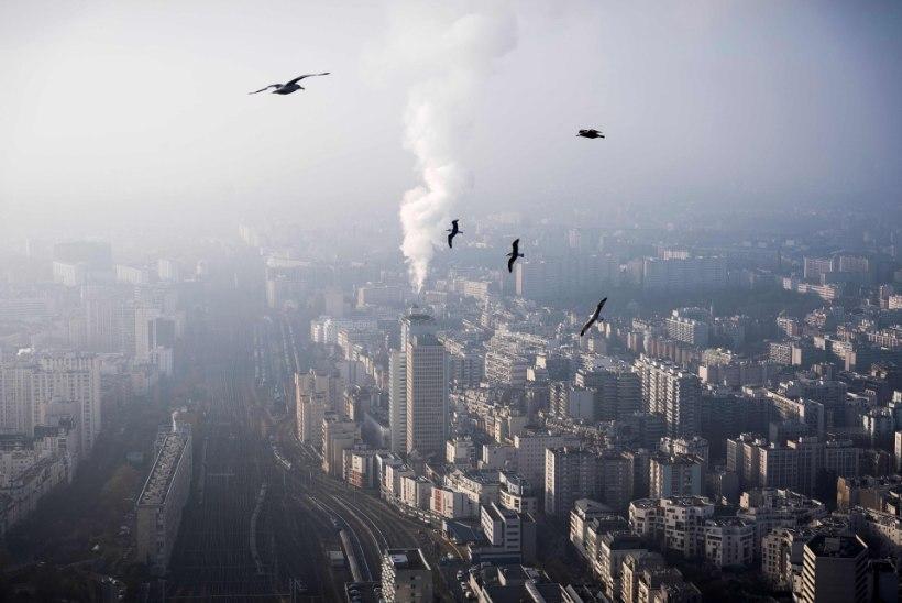 Maailma Meteoroloogiaorganisatsioon: 2017. aasta tõuseb kolme soojema hulka