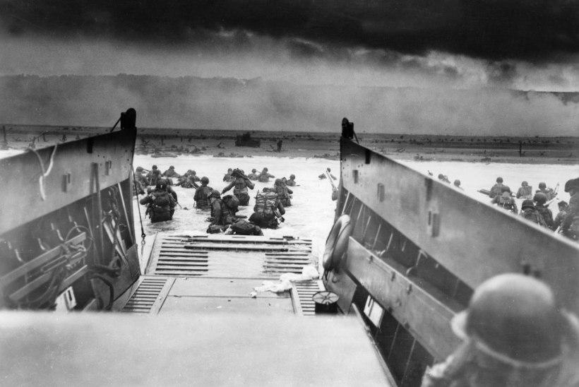 Meriküla dessant 1944. Balti laevastiku fiasko Narva lahe rannikul